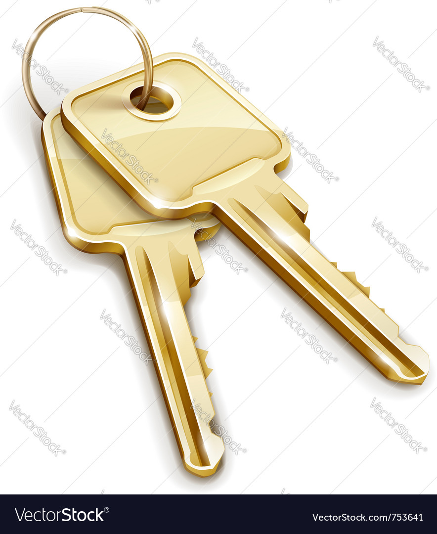 Sheaf of gold keys vector | Price: 3 Credit (USD $3)