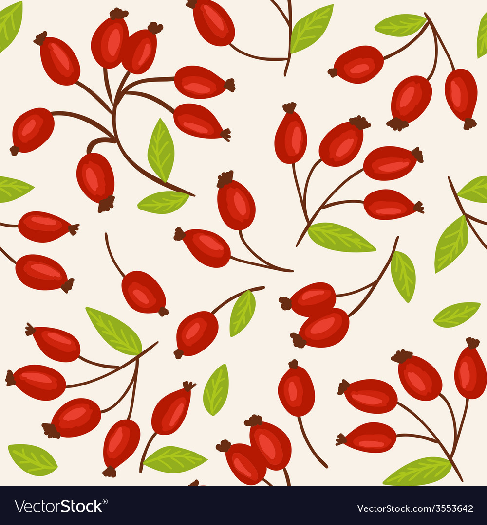 Rosehip seamless background vector | Price: 1 Credit (USD $1)