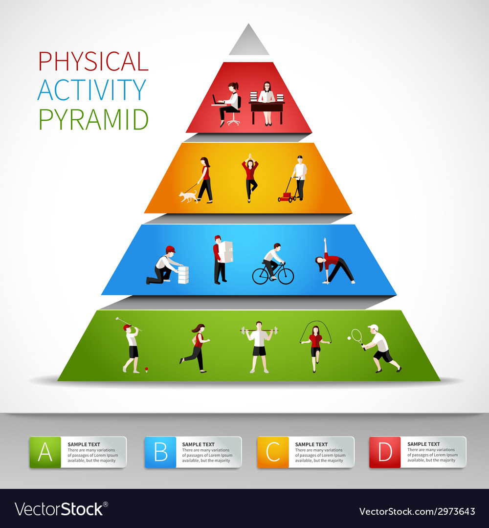 Physical activity pyramid infographic vector | Price: 1 Credit (USD $1)