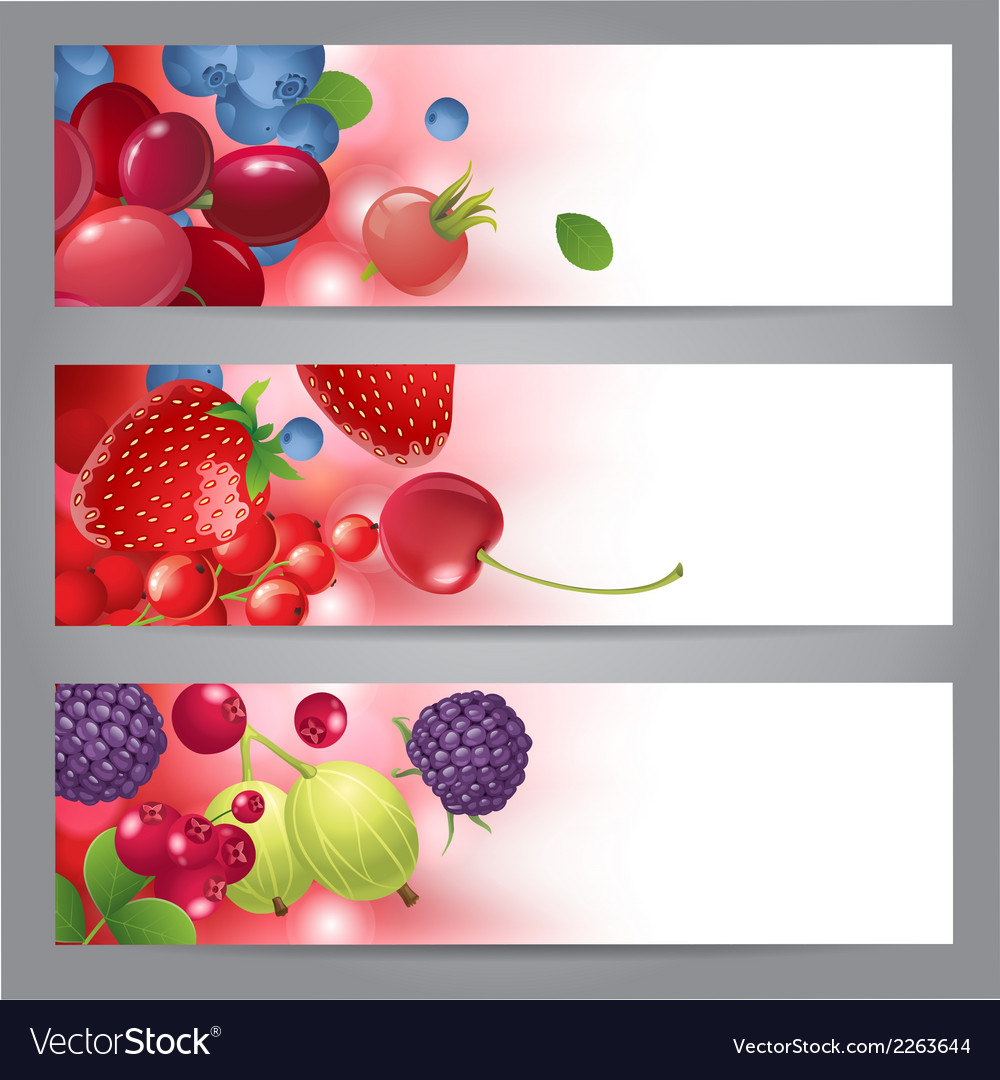 Banners with berries vector | Price: 1 Credit (USD $1)