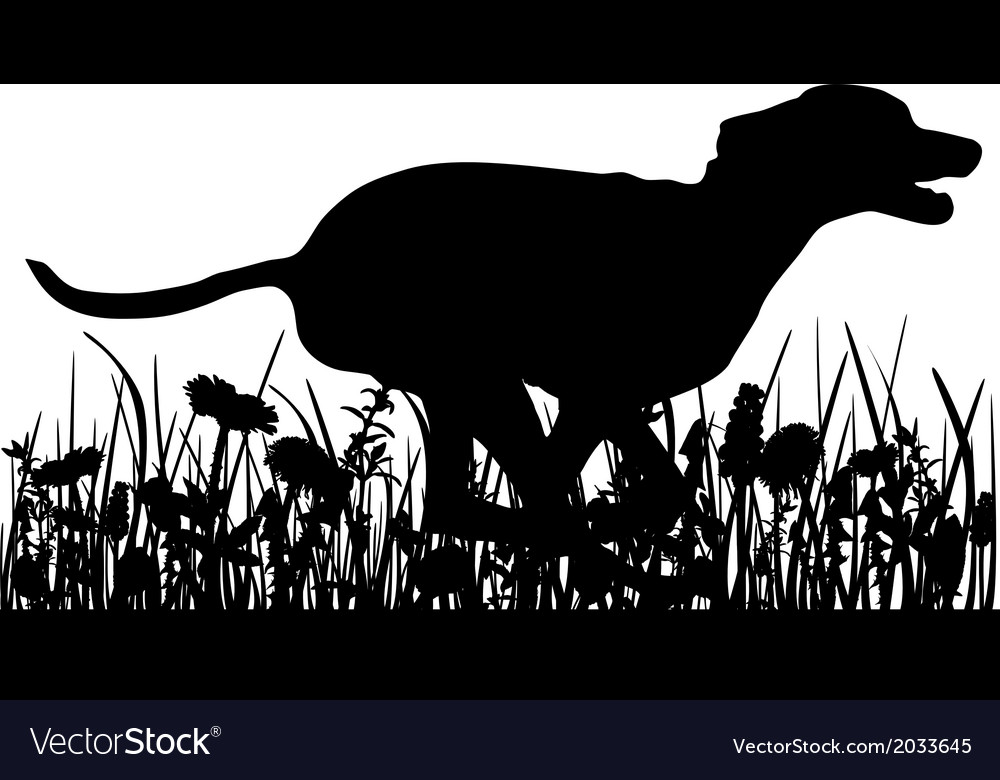 Dog in the meadow vector | Price: 1 Credit (USD $1)