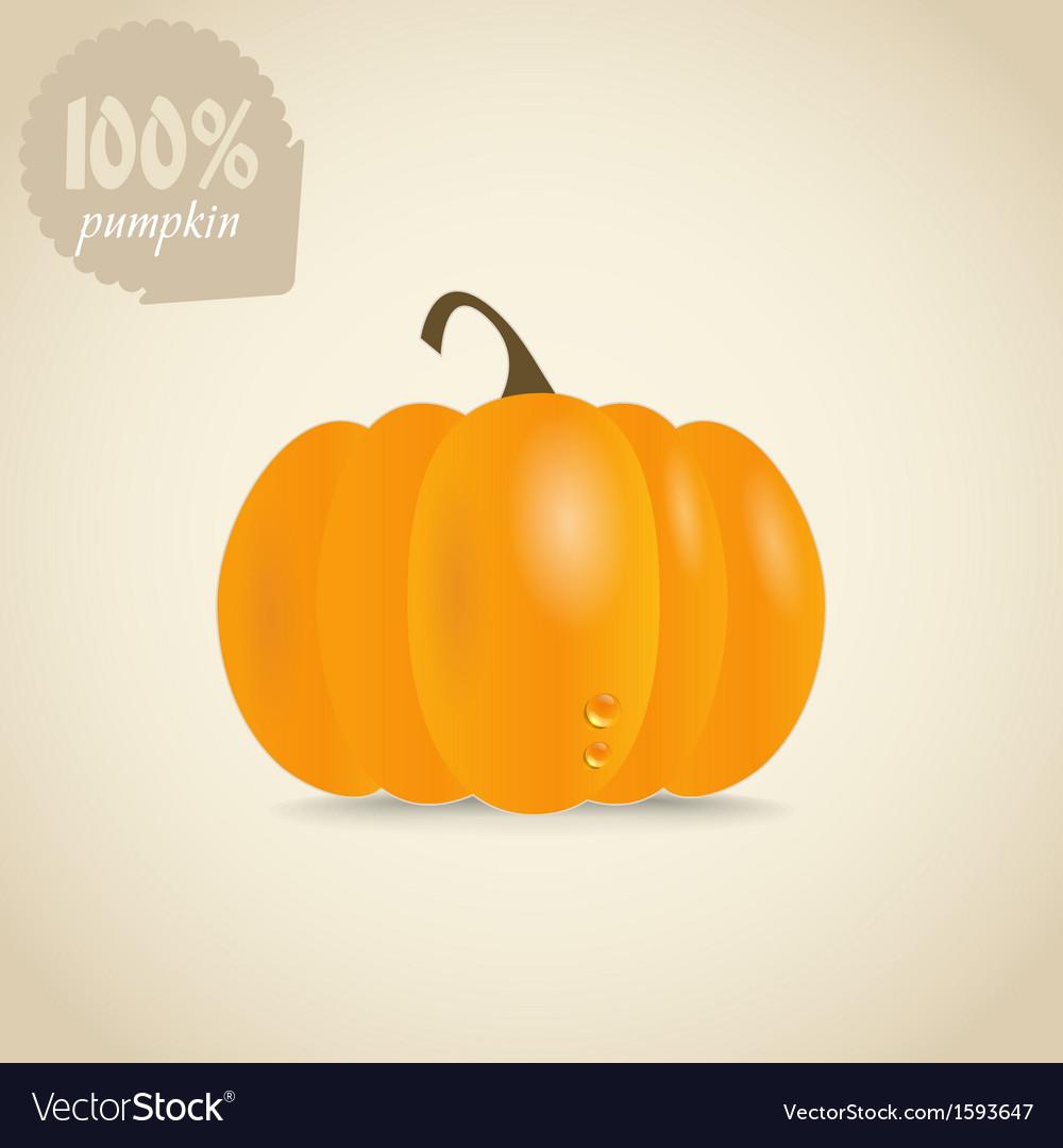 Cute orange pumpkin vector | Price: 1 Credit (USD $1)