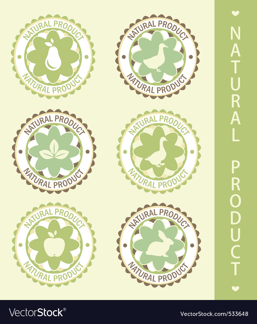 Ls natural product vector illustration vector   Price: 1 Credit (USD $1)
