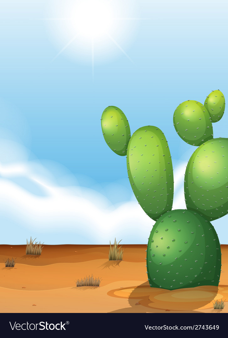 A cactus plant in the desert vector | Price: 3 Credit (USD $3)