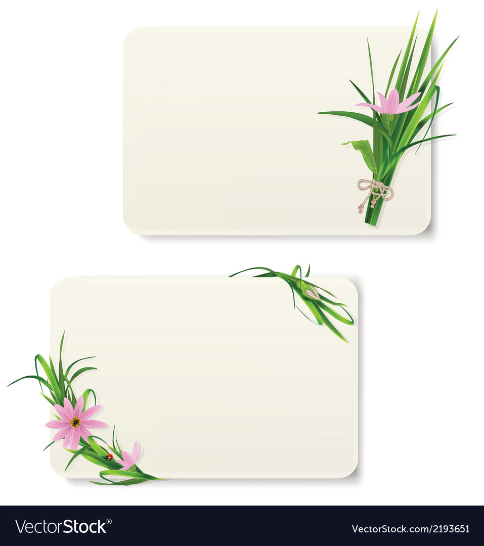 Card with grass and flowers vector | Price: 1 Credit (USD $1)