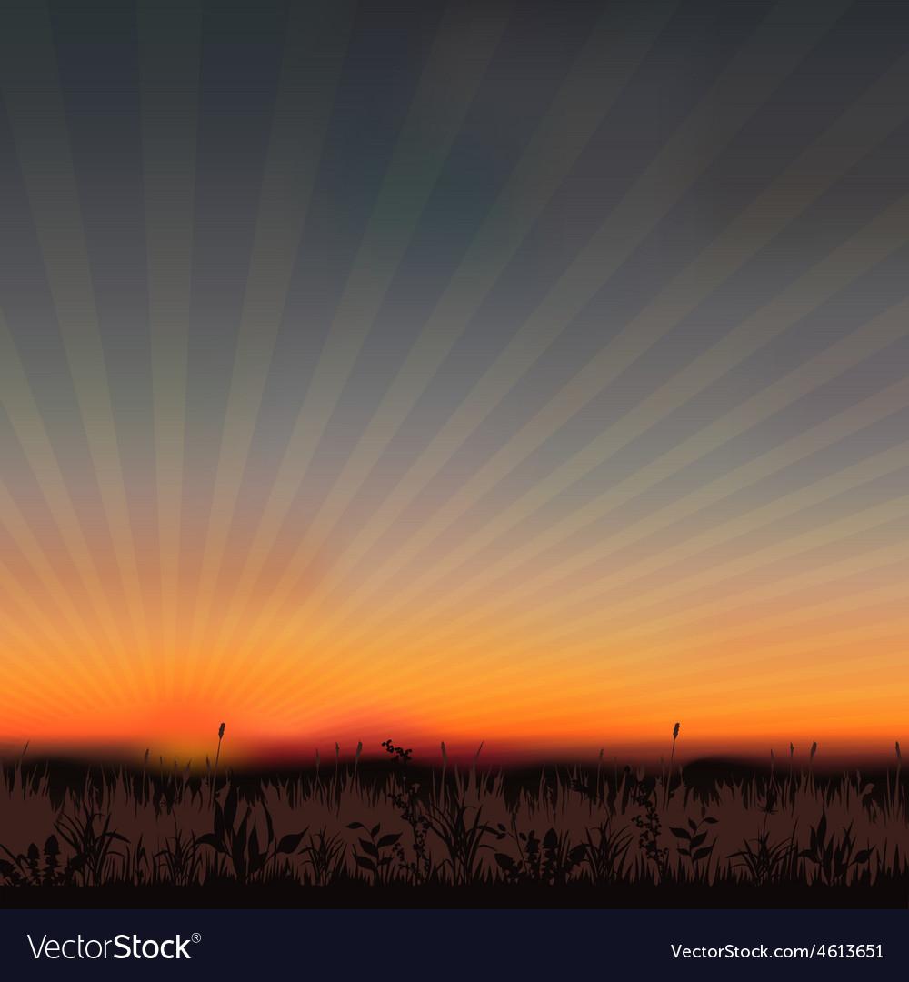Sunset grassland vector | Price: 1 Credit (USD $1)