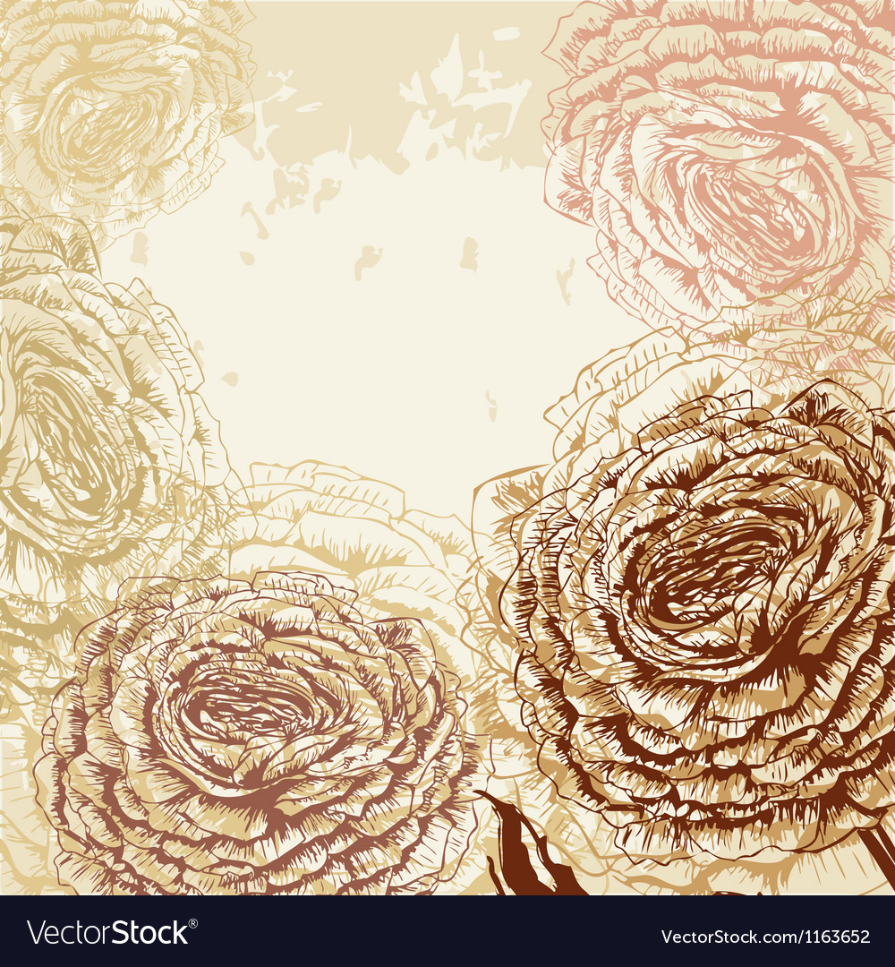 Grungy rose background vector | Price: 1 Credit (USD $1)