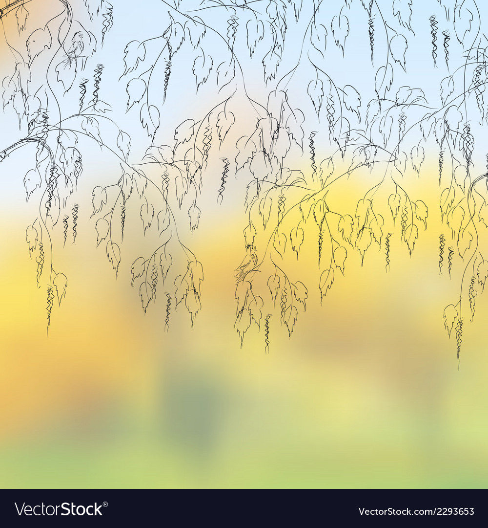 Bent birch branches on a cloudy autumn day eps 8 vector | Price: 1 Credit (USD $1)
