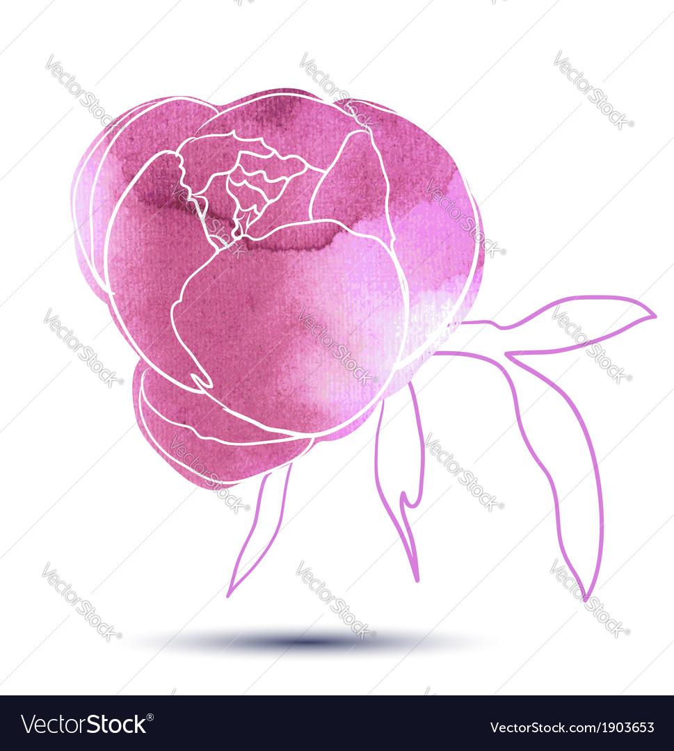 Iris flower vector   Price: 1 Credit (USD $1)