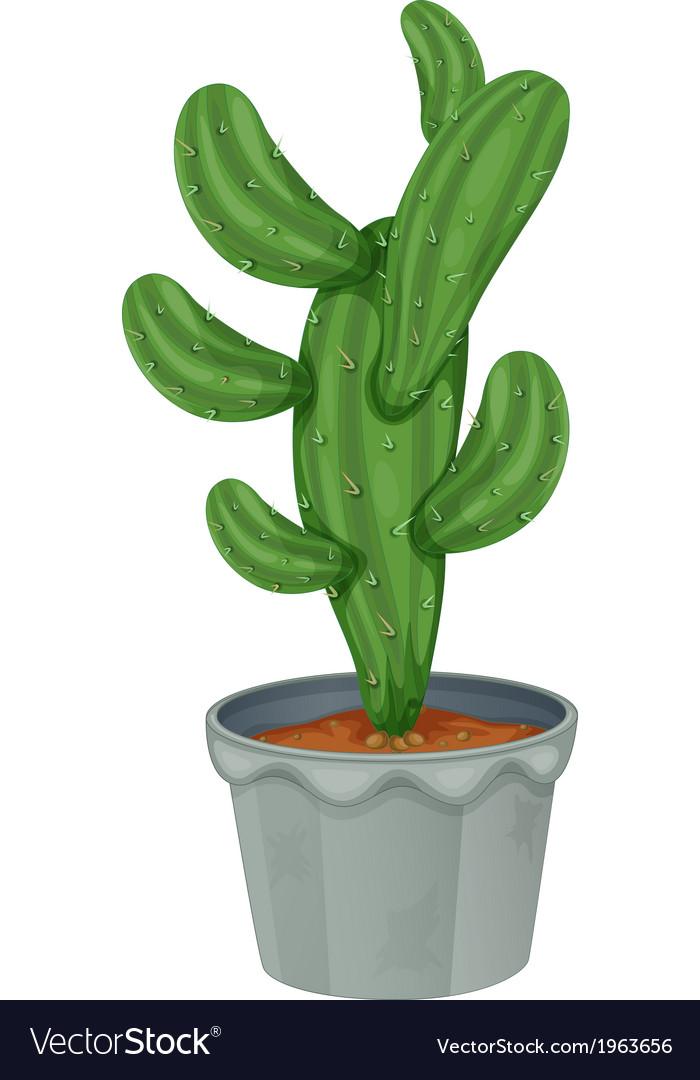 A cactus plant vector | Price: 1 Credit (USD $1)