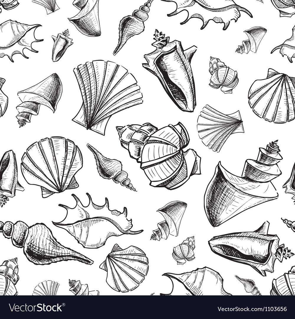 Sea shells sketch background vector | Price: 1 Credit (USD $1)