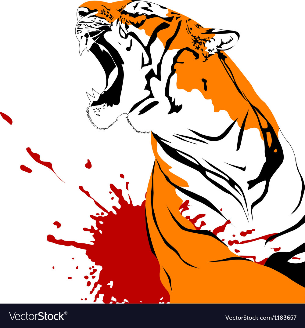 A wounded tiger vector | Price: 1 Credit (USD $1)