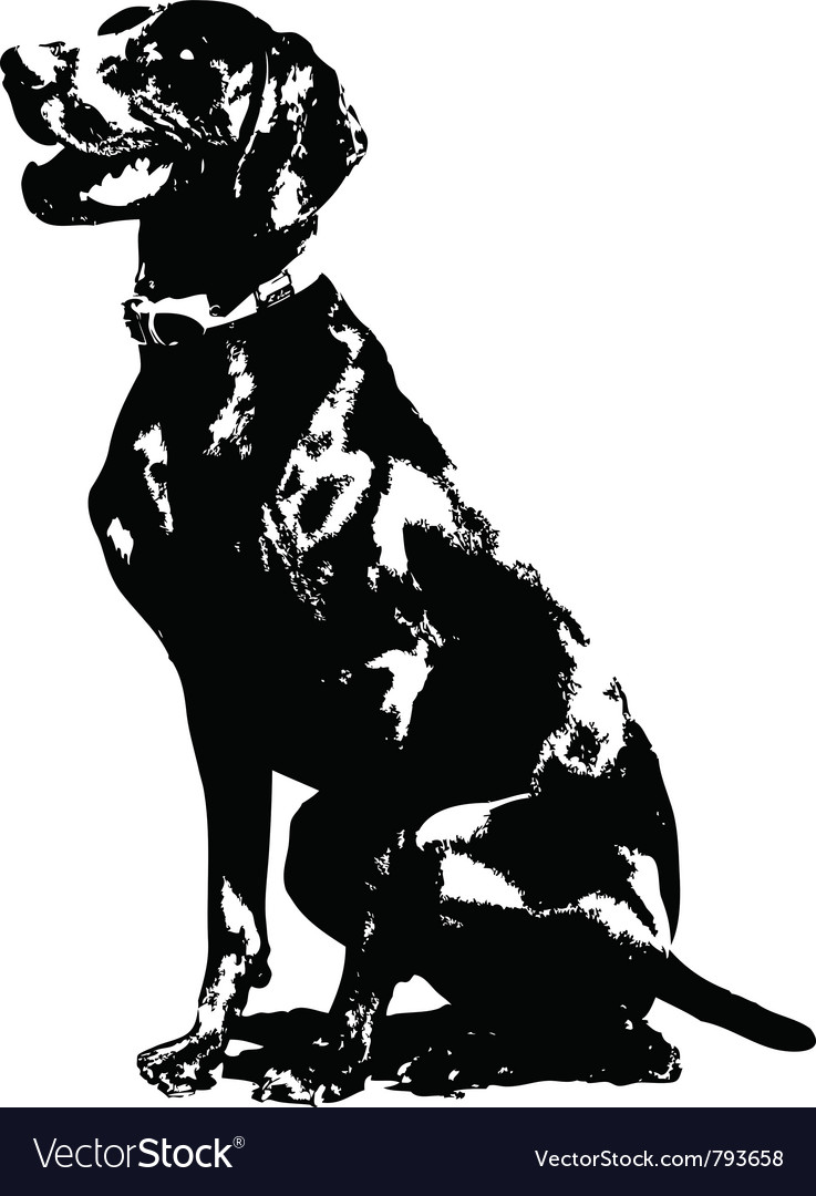 German pointer silhouette vector | Price: 1 Credit (USD $1)