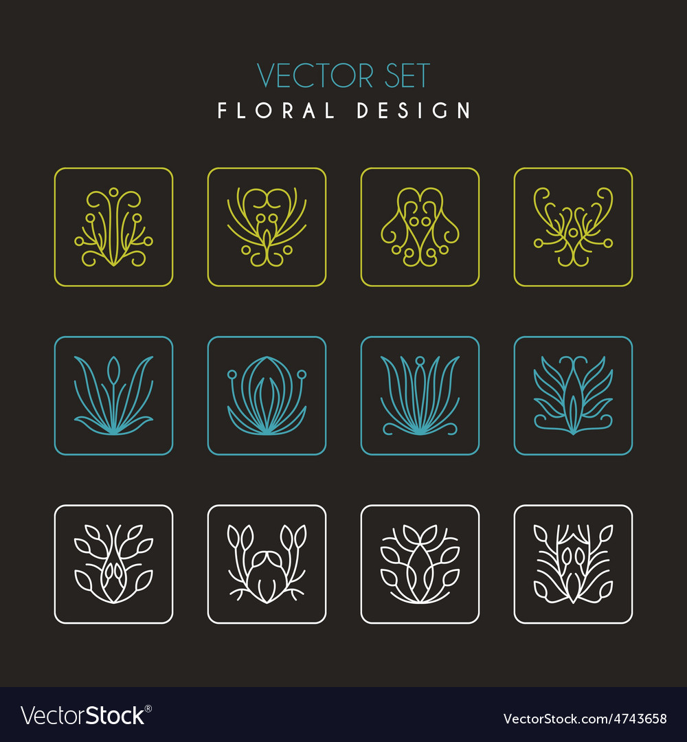 Set of thin line floral design elements for logos vector | Price: 1 Credit (USD $1)