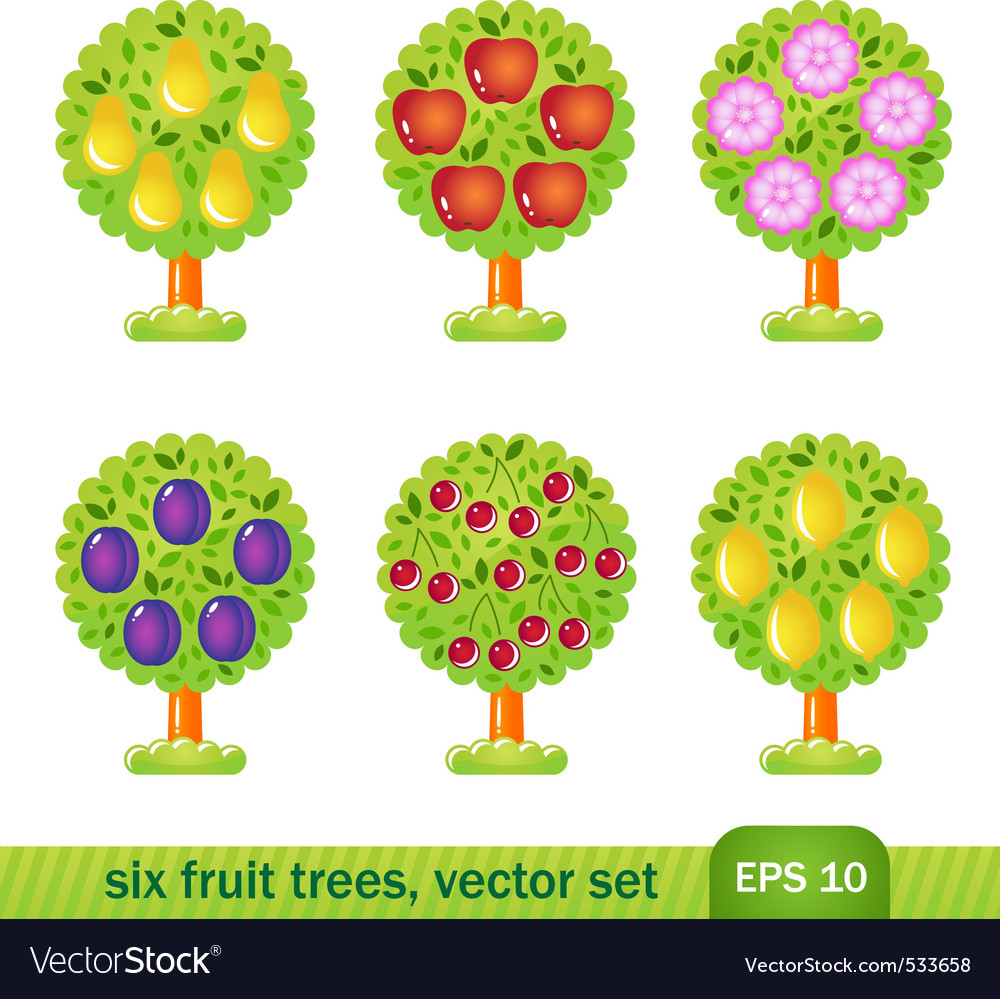 Six fruit trees vector | Price: 1 Credit (USD $1)
