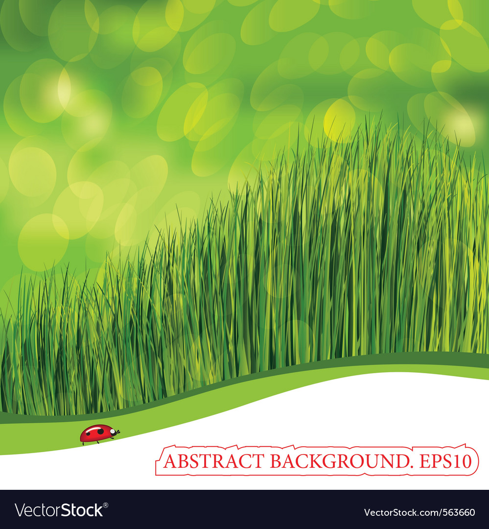 Spring background with ladybird vector | Price: 1 Credit (USD $1)