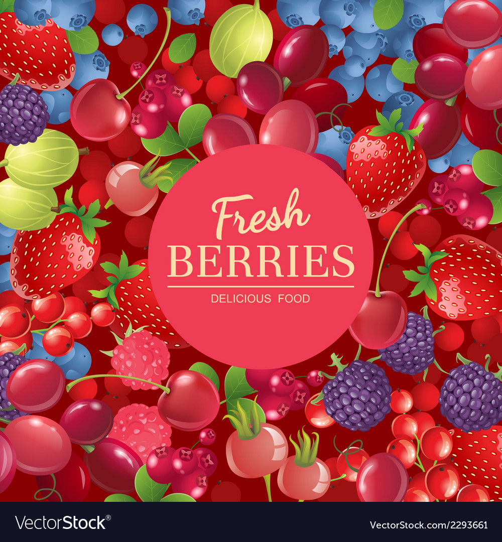 Background with berries vector | Price: 3 Credit (USD $3)
