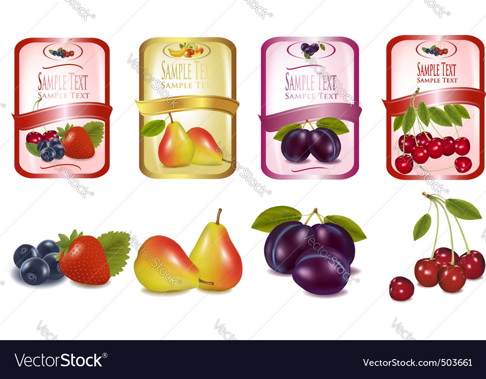 Fruit labels vector | Price: 3 Credit (USD $3)