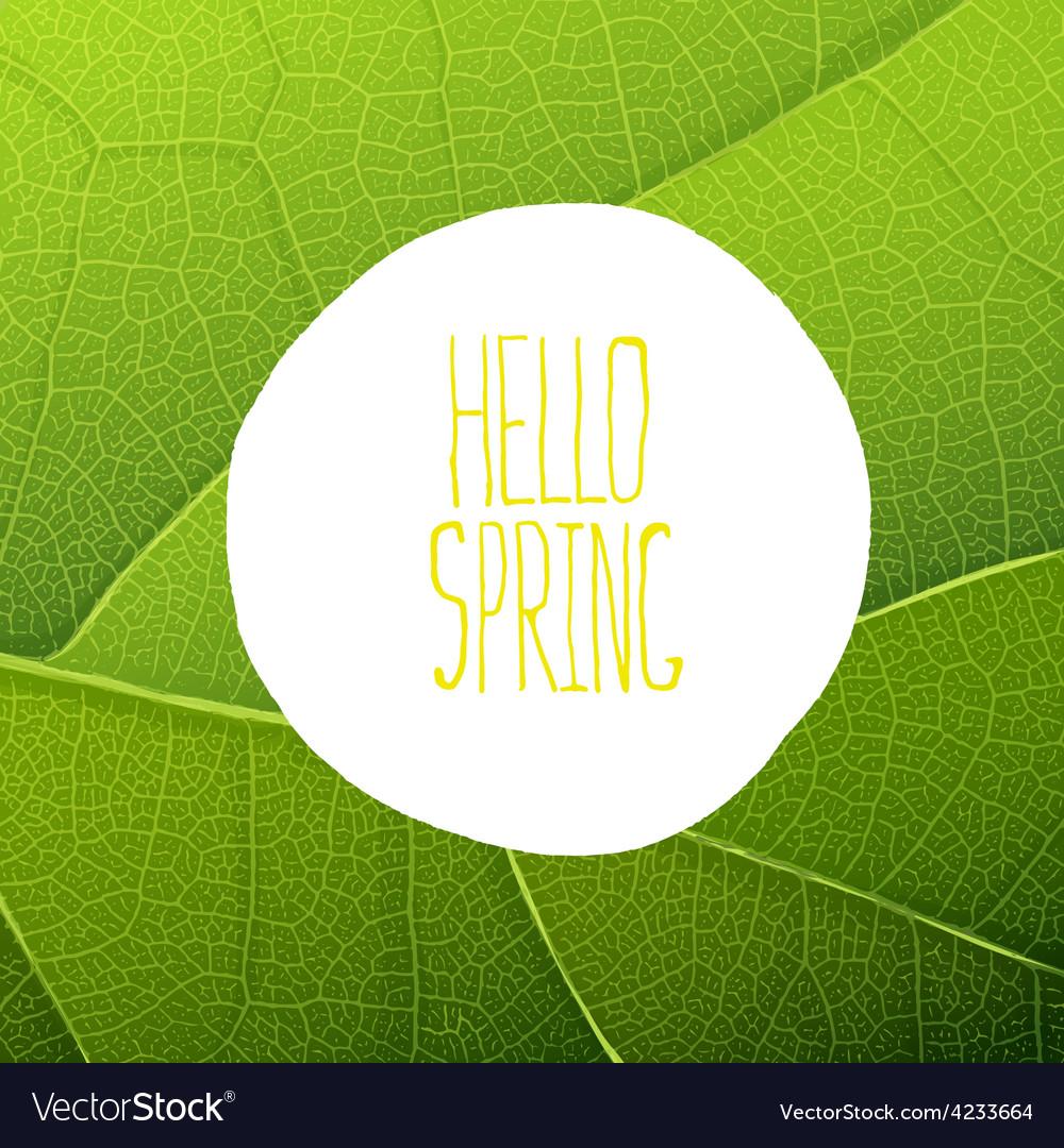 Hello spring leaf texture vector | Price: 1 Credit (USD $1)