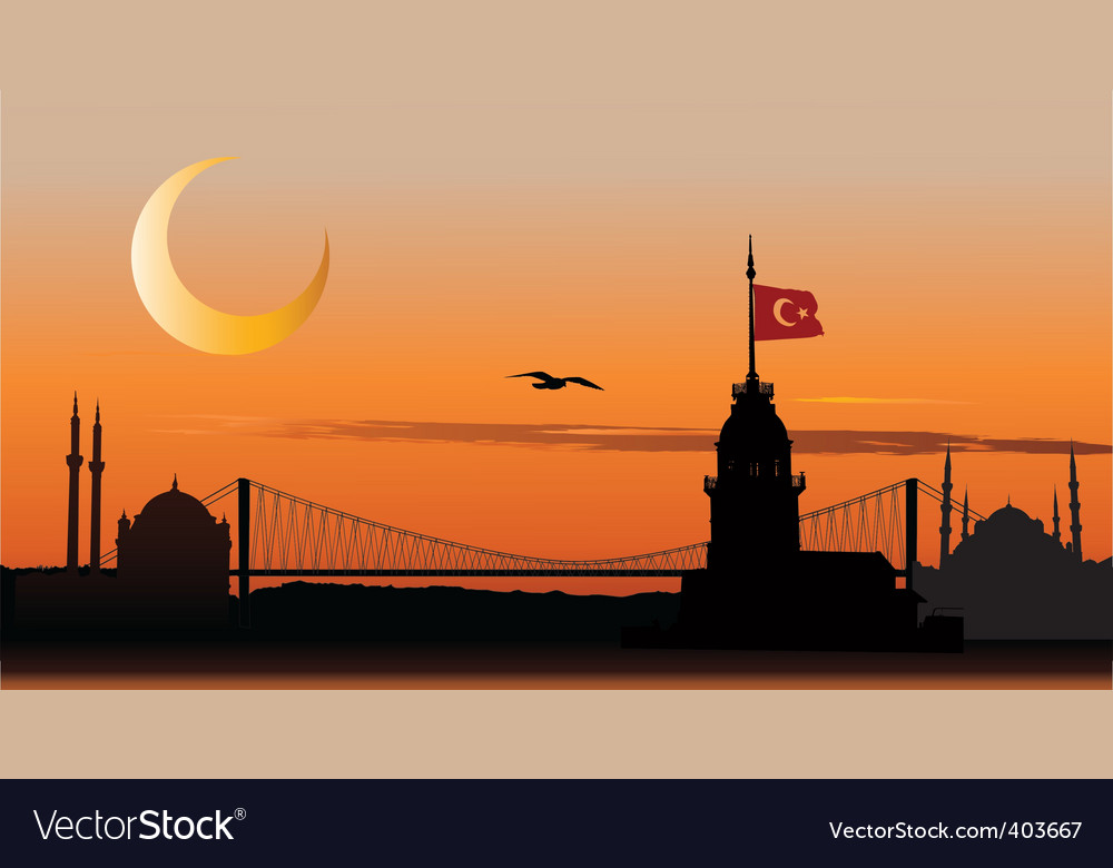 Silhouette of istanbul at sunset vector | Price: 1 Credit (USD $1)