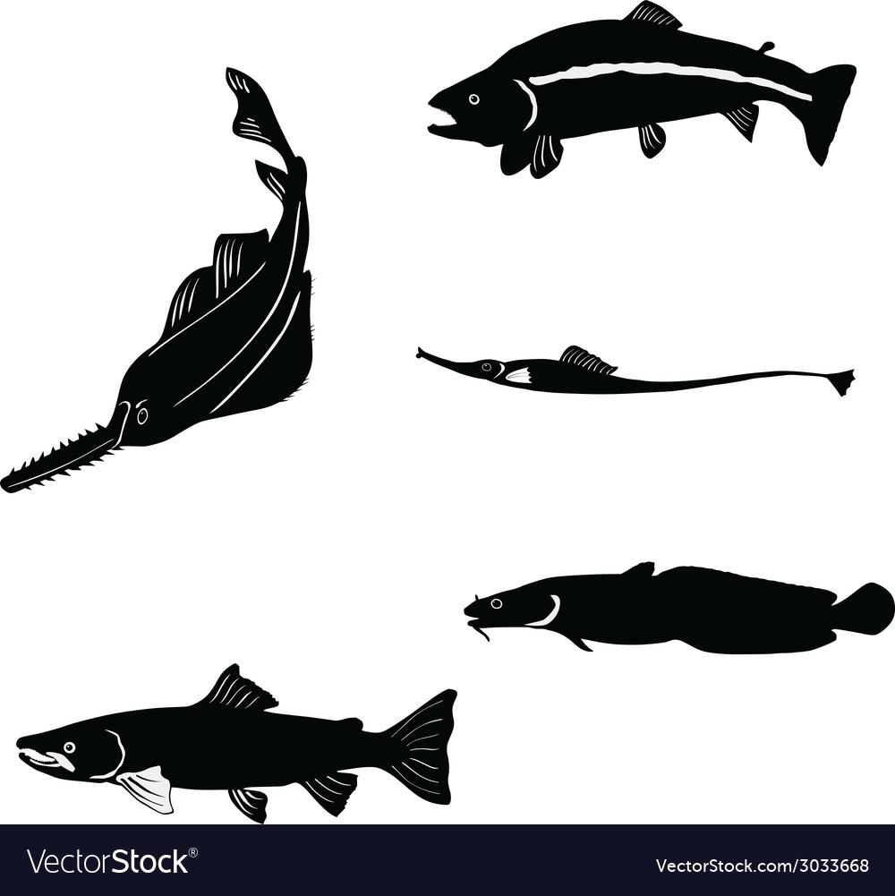 Fish vector | Price: 1 Credit (USD $1)