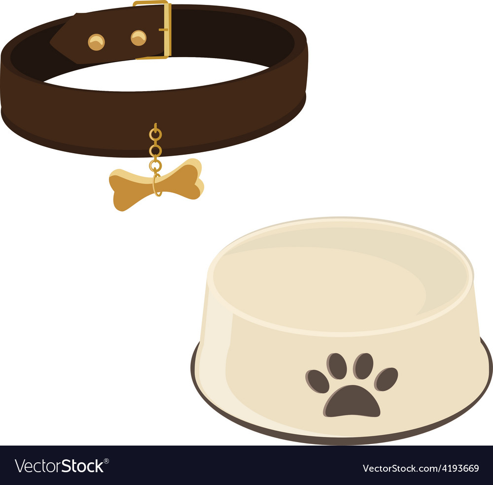Dog bowl and collar vector | Price: 1 Credit (USD $1)