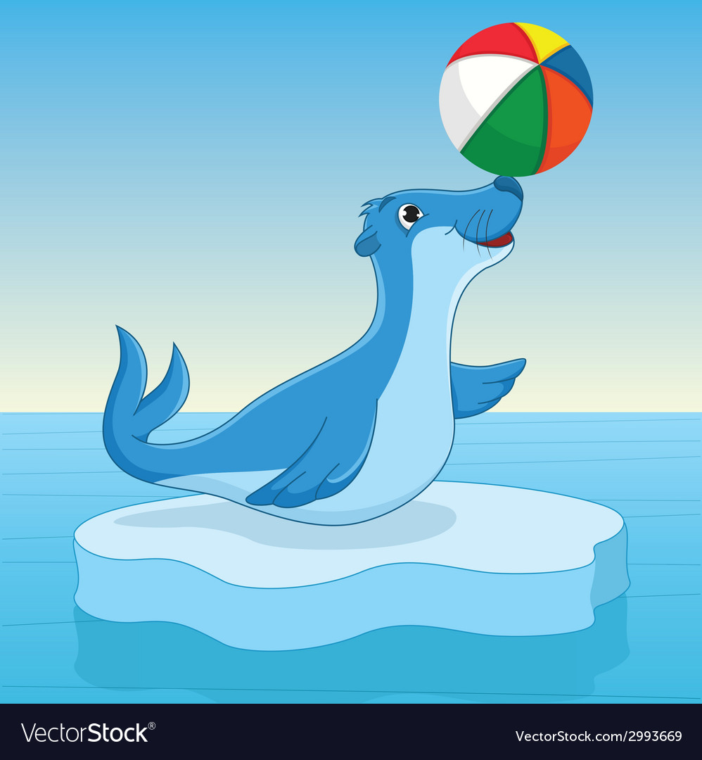 Sea calf vector | Price: 1 Credit (USD $1)