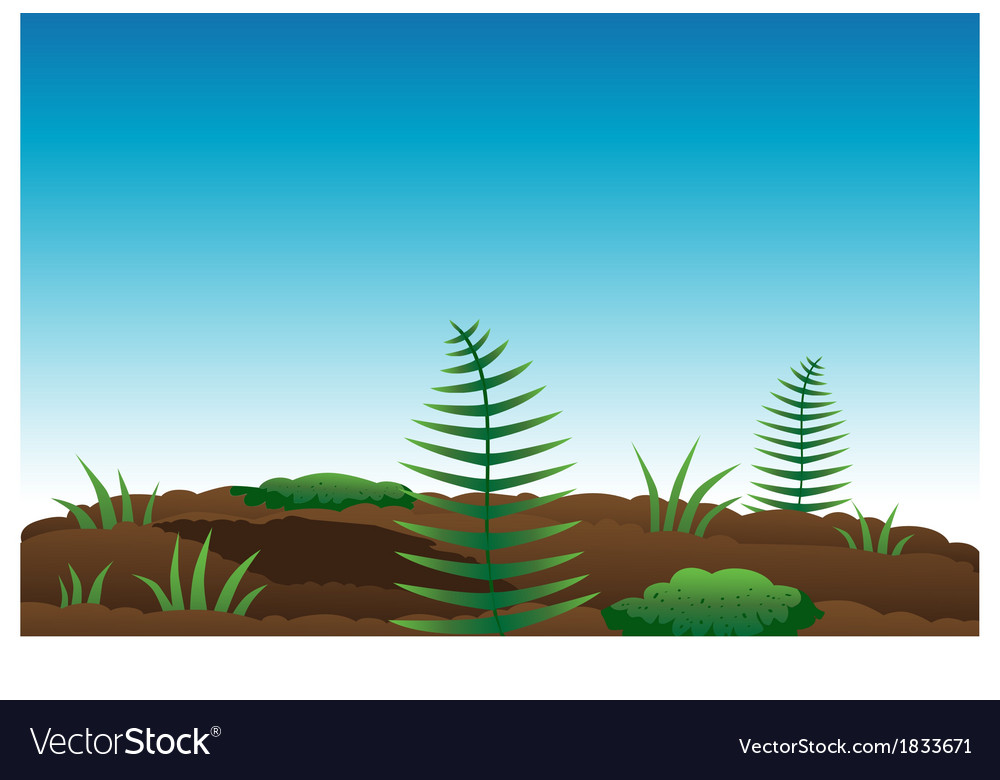 Ferns moss soil vector | Price: 1 Credit (USD $1)