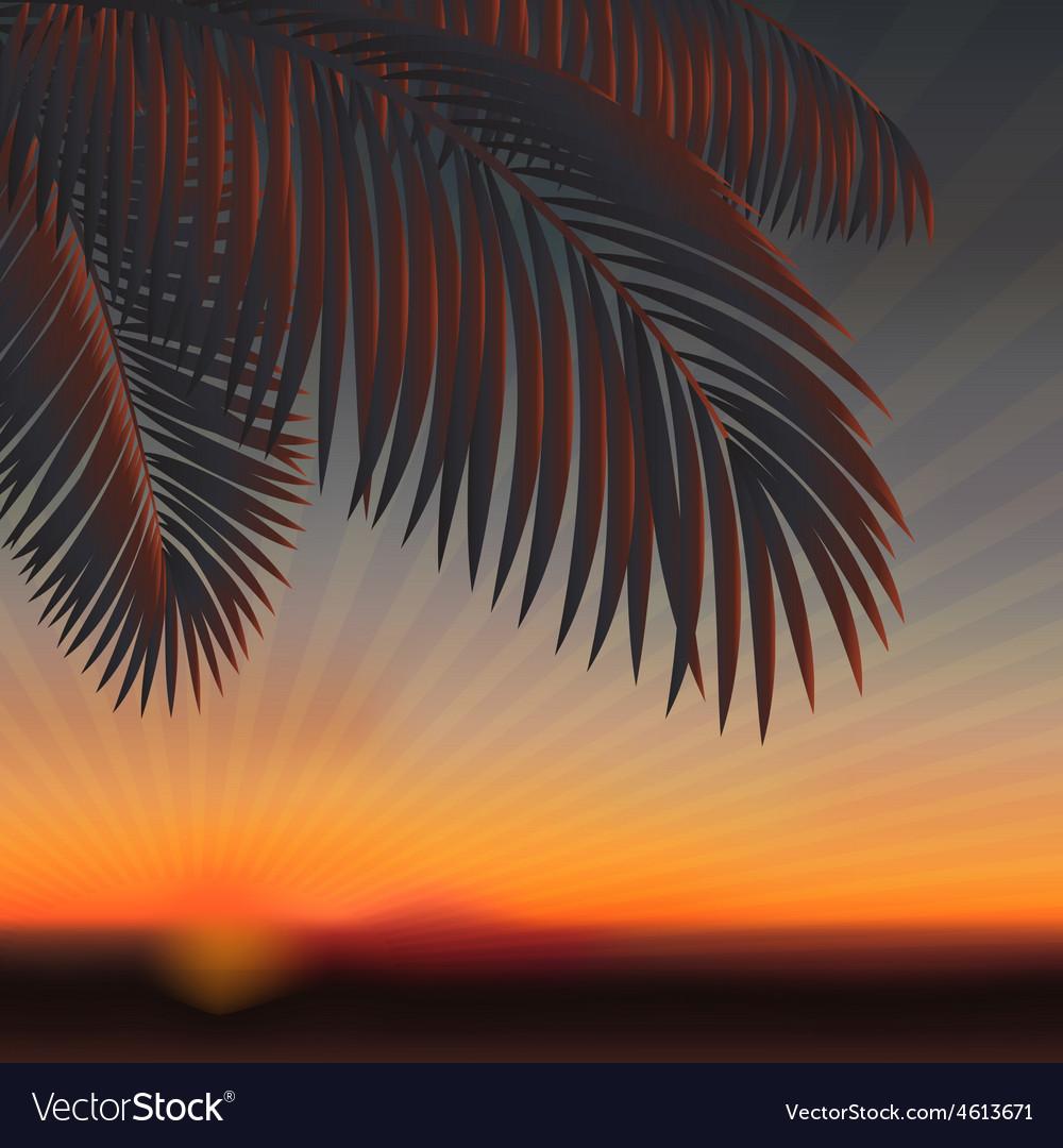 Sunset vector   Price: 1 Credit (USD $1)