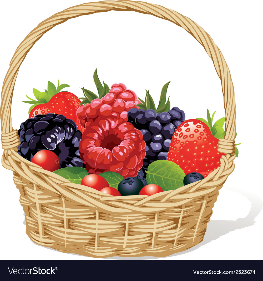 Basket with berries vector | Price: 1 Credit (USD $1)