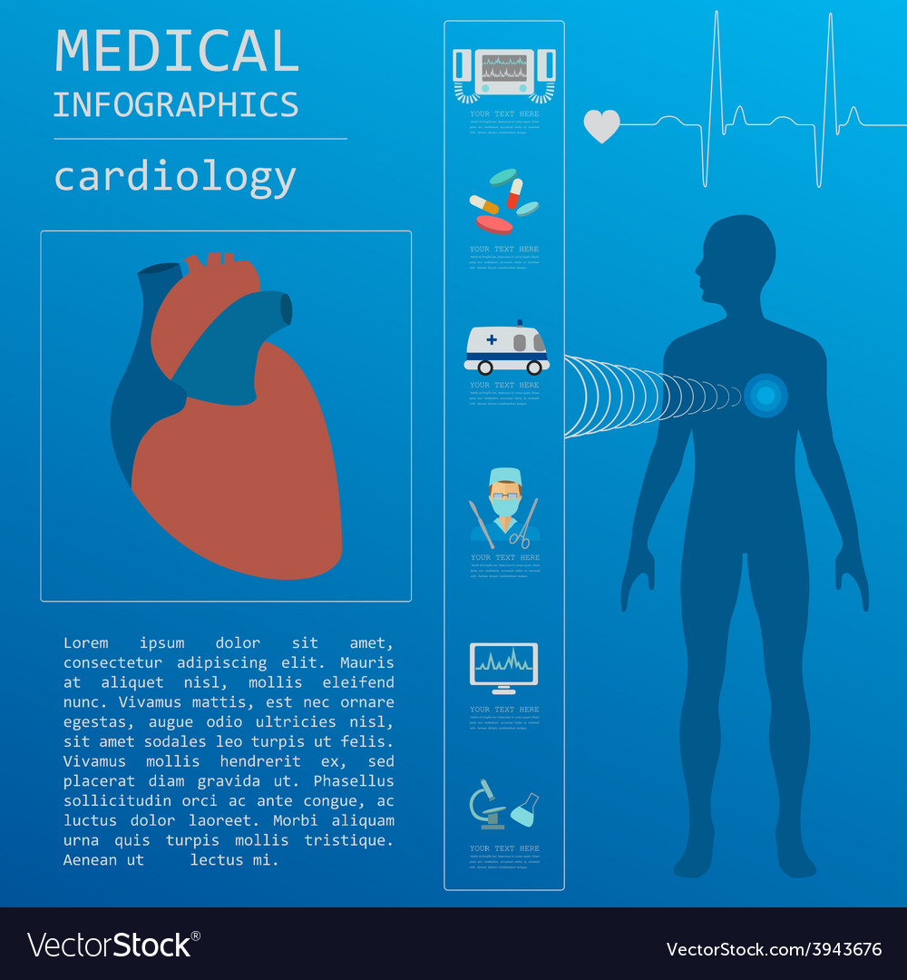 Medical and healthcare infographic cardiology vector | Price: 1 Credit (USD $1)