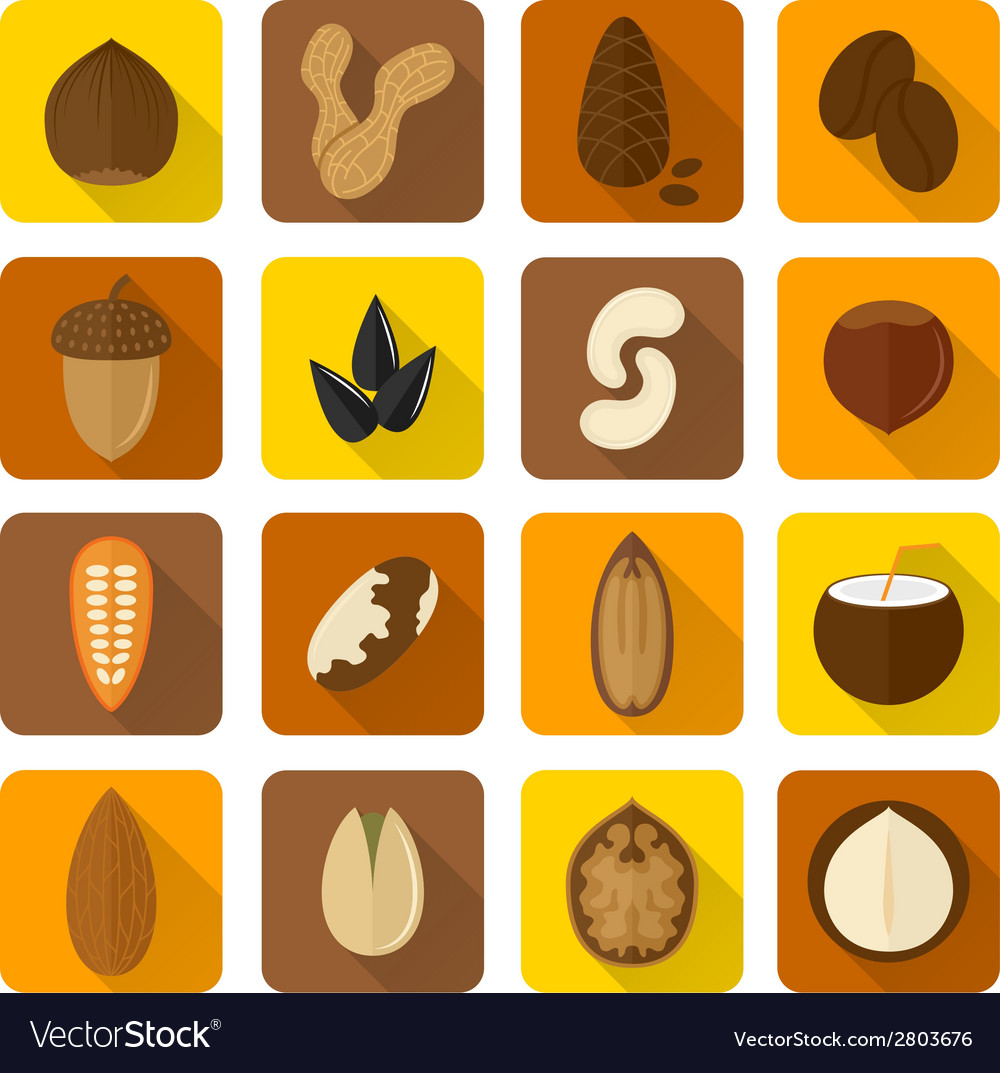 Nuts icons set vector | Price: 1 Credit (USD $1)