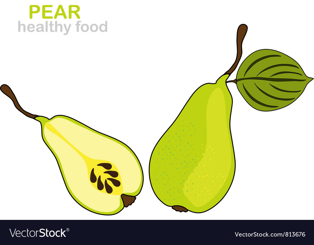 Pear fruit vector | Price: 1 Credit (USD $1)