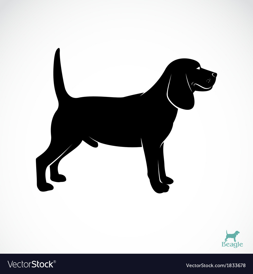 Dog beagle vector | Price: 1 Credit (USD $1)