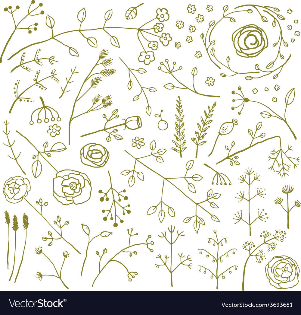 Field flowers and plants decoration collection vector | Price: 1 Credit (USD $1)
