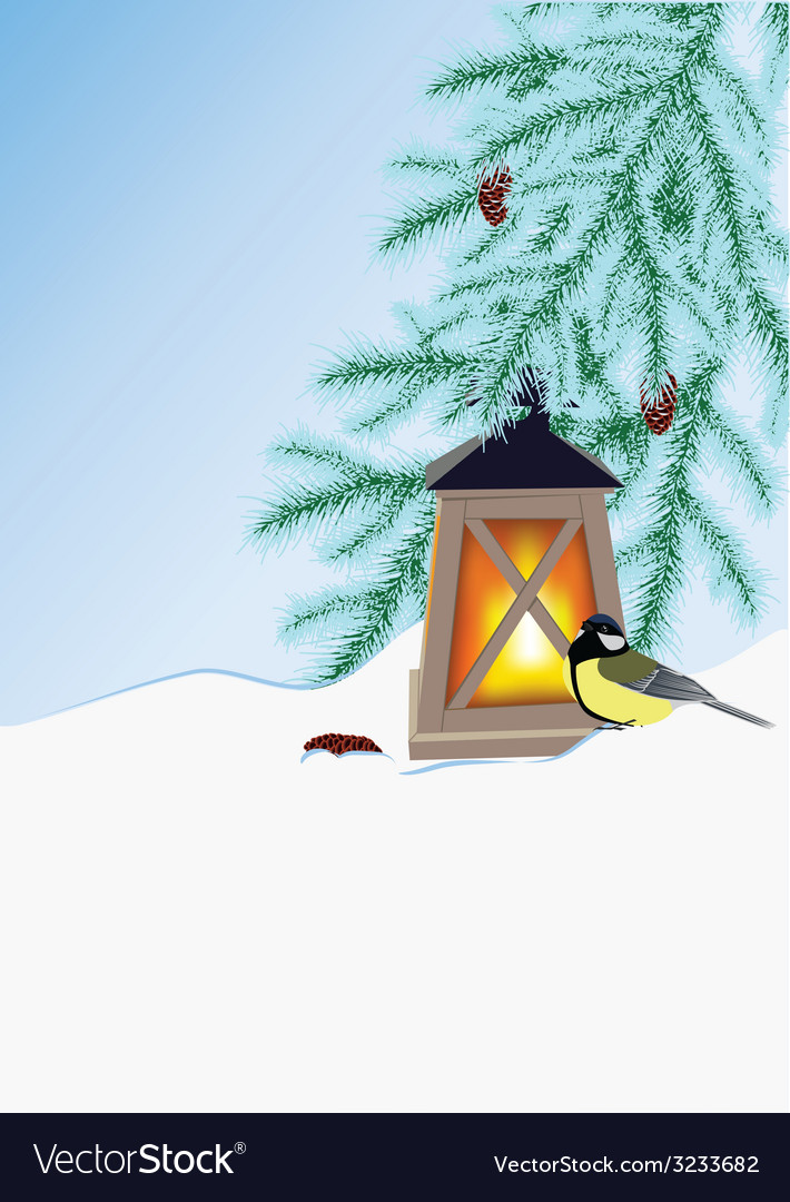 Fir branches flashlight and tit vector | Price: 1 Credit (USD $1)