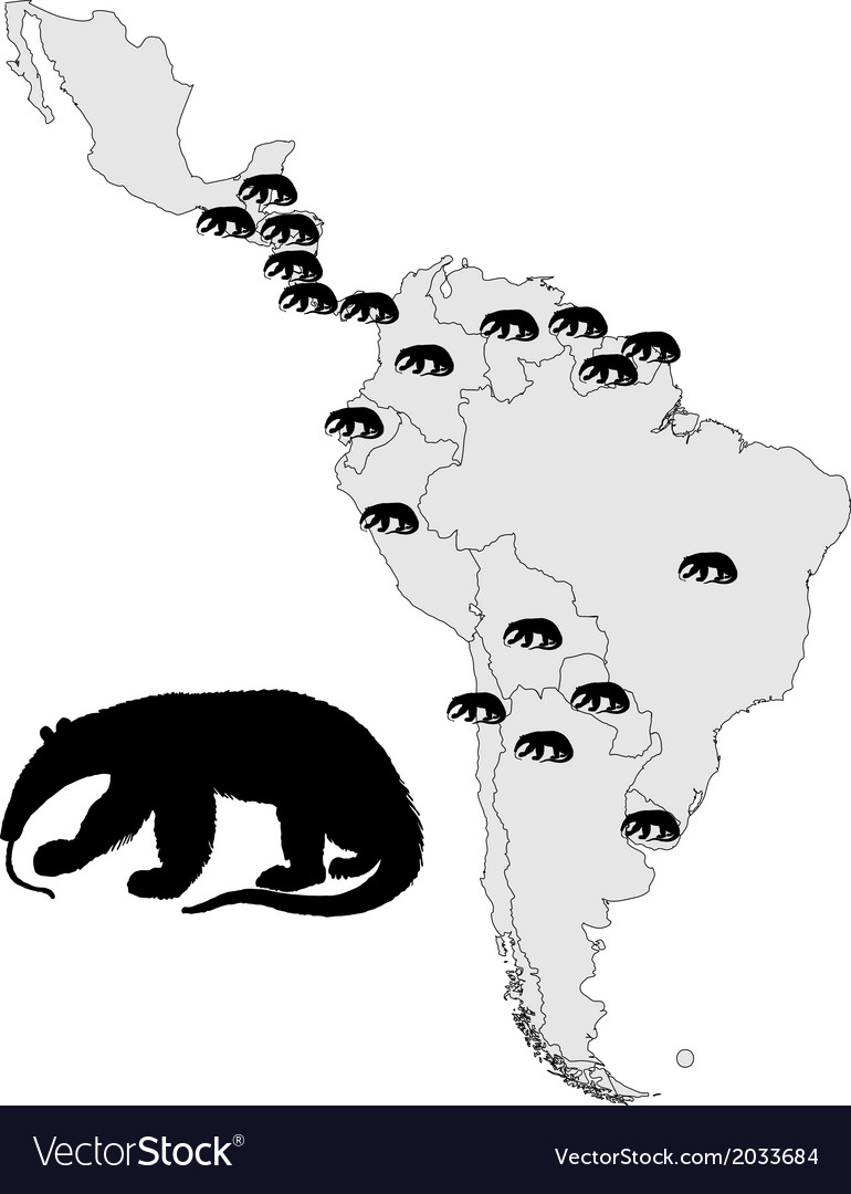 Giant anteater range vector | Price: 1 Credit (USD $1)