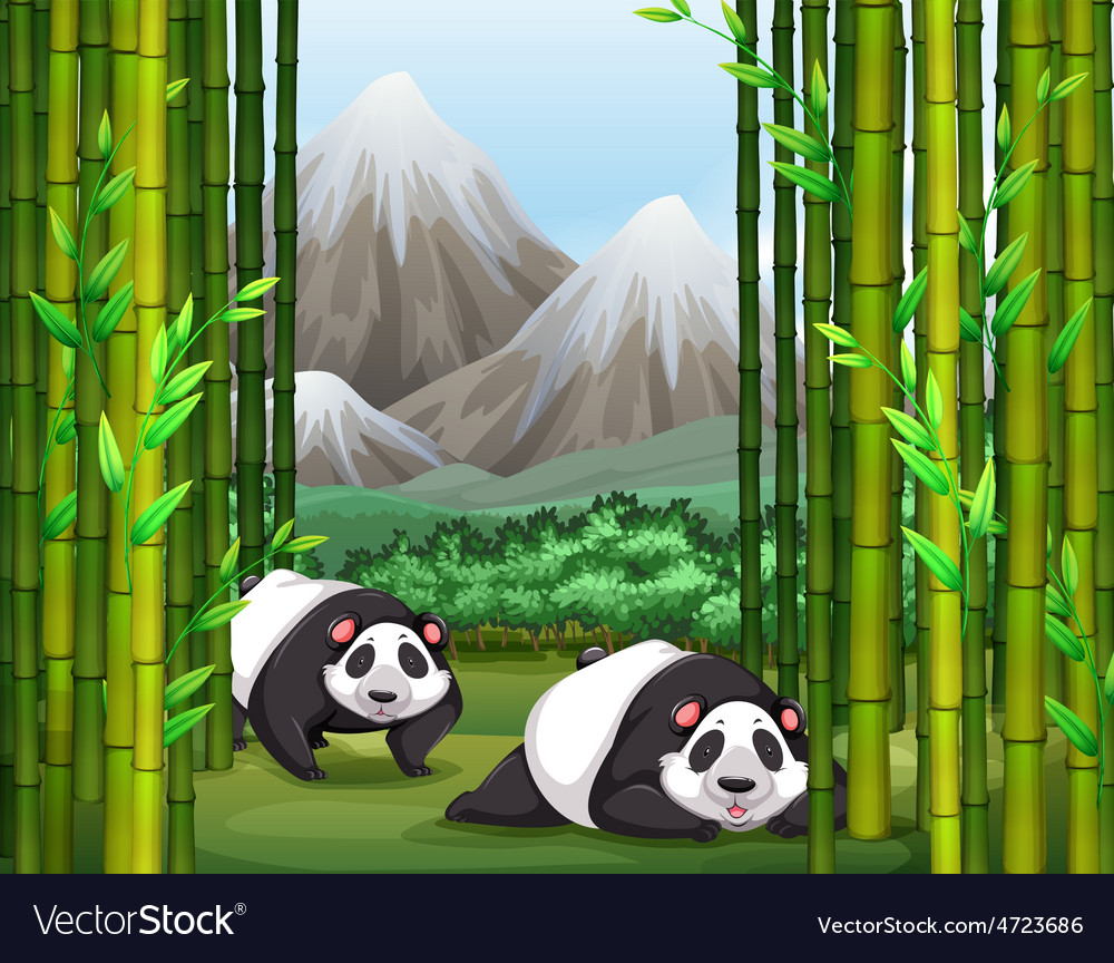 Panda vector | Price: 5 Credit (USD $5)