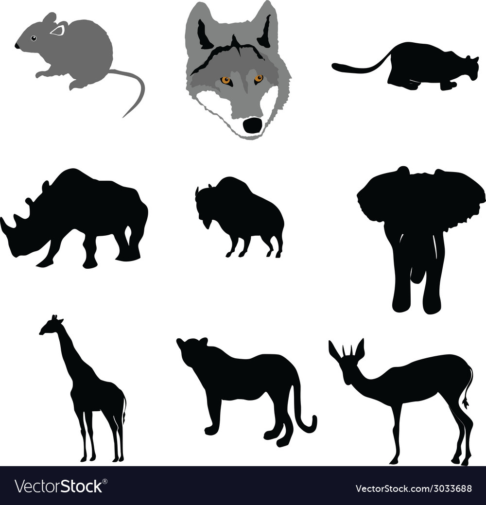 Mouse outline painting paw pest pet rat tai vector | Price: 1 Credit (USD $1)