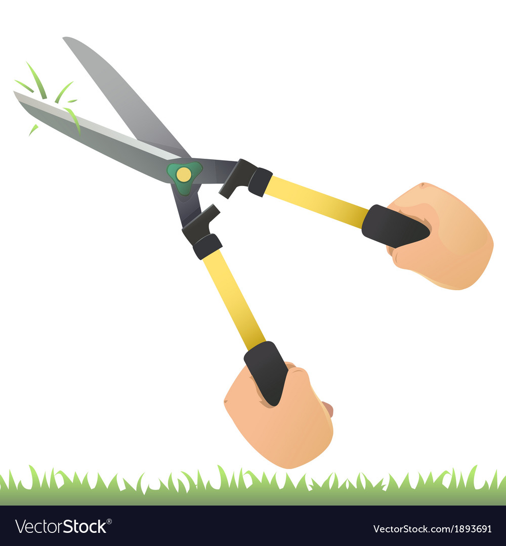 Grass shears vector | Price: 1 Credit (USD $1)