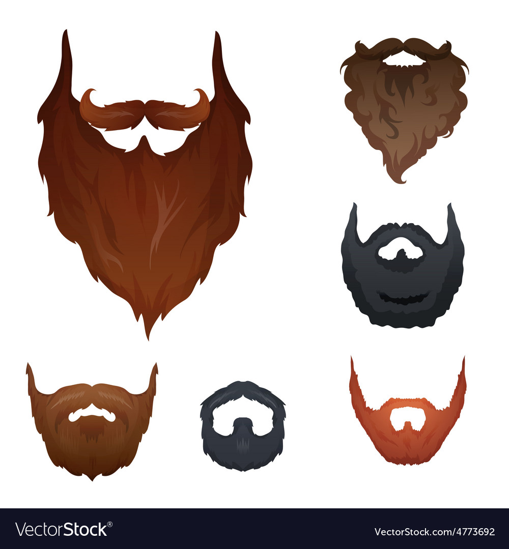 Set of beards vector | Price: 1 Credit (USD $1)