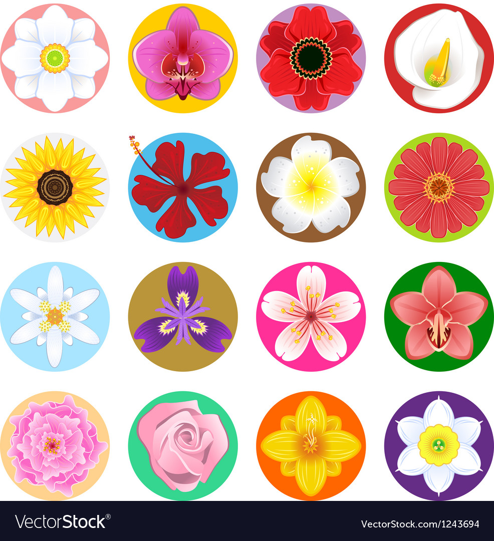 Flower collection set vector | Price: 1 Credit (USD $1)