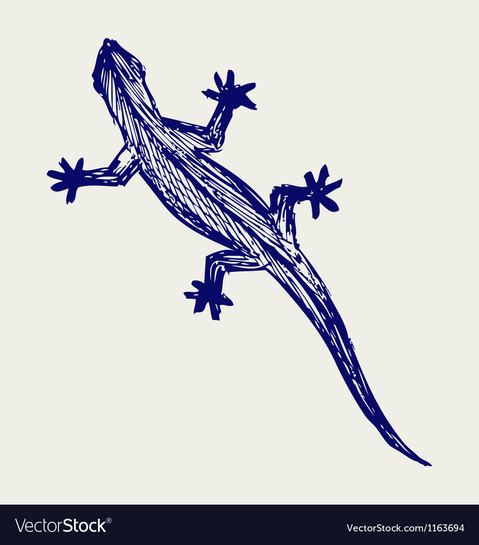 Silhouette of a gecko vector | Price: 1 Credit (USD $1)