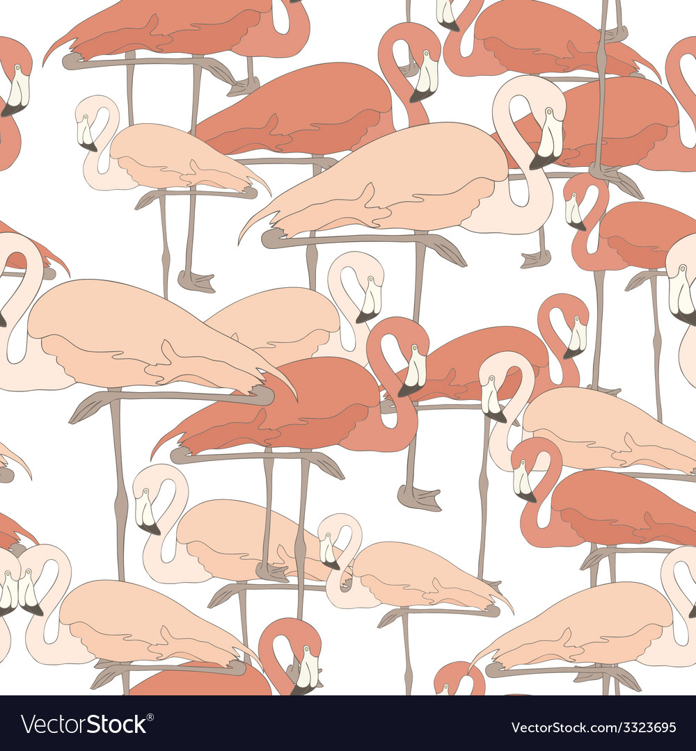Flamingostand2 vector | Price: 1 Credit (USD $1)