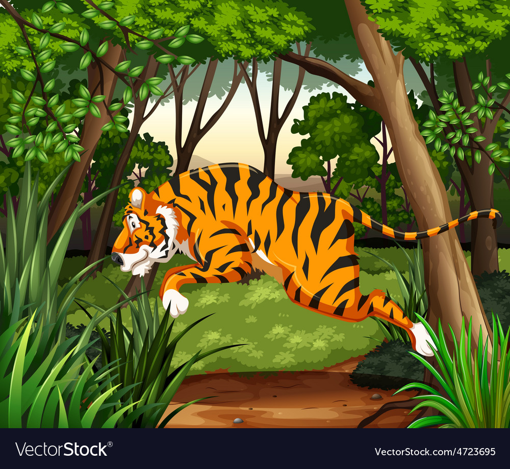 Tiger vector | Price: 5 Credit (USD $5)