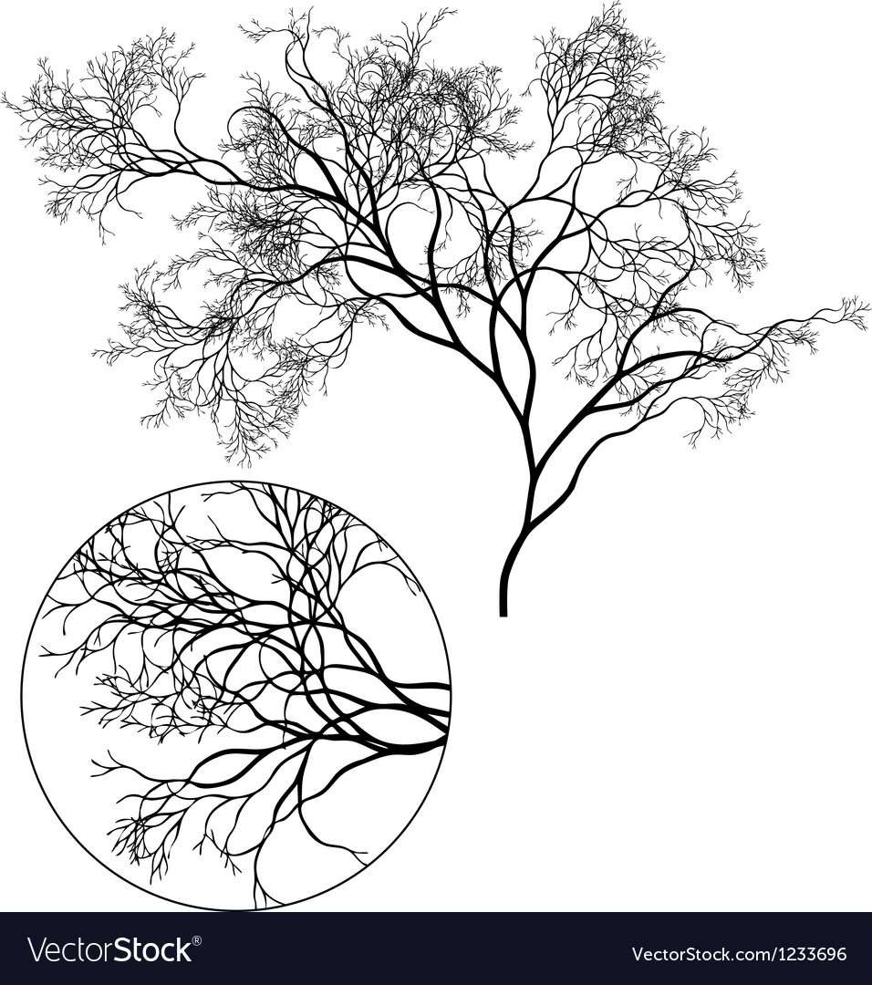 Detailed tree silhouette vector | Price: 1 Credit (USD $1)