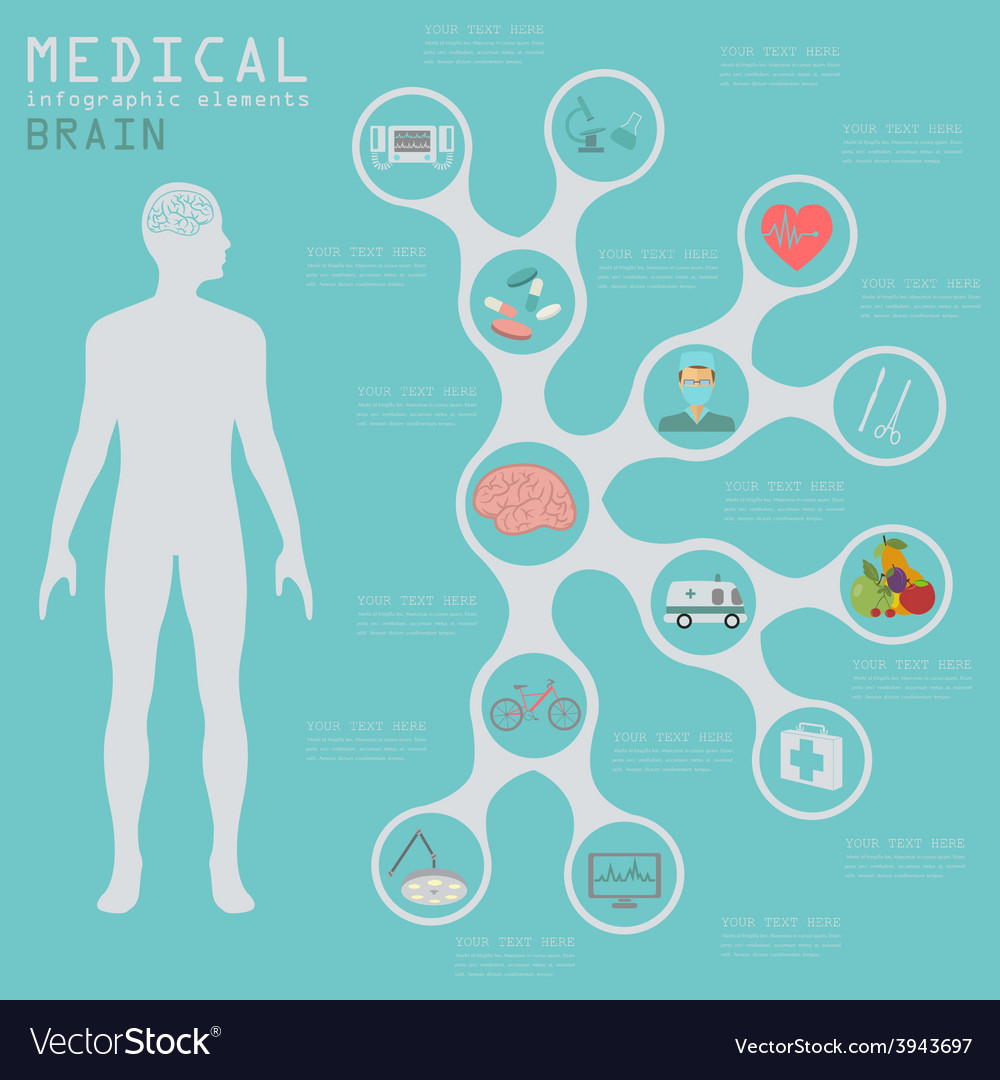 Medical and healthcare infographic brain vector   Price: 1 Credit (USD $1)
