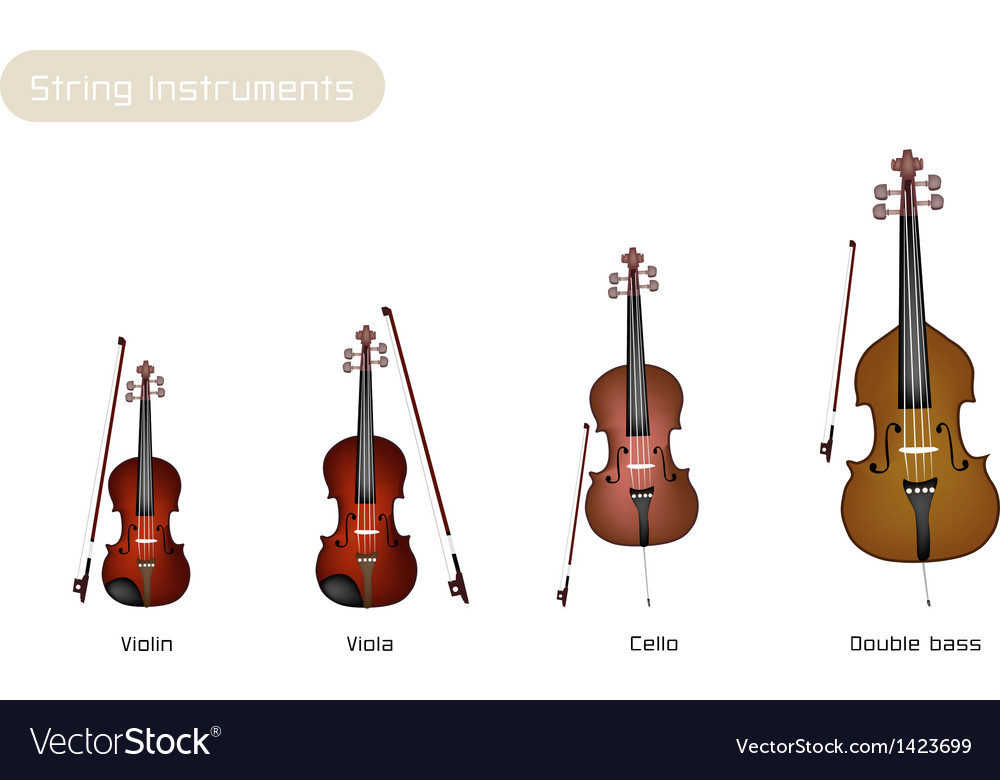Four musical instrument strings vector | Price: 1 Credit (USD $1)