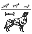 Set of different dog breeds silhouettes isolated vector