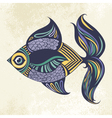 Colored fish vector